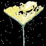 bodza logó