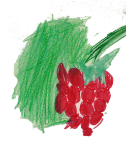 málna logó2