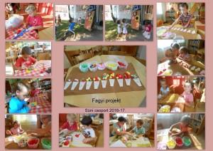 Süni fagyi projekt